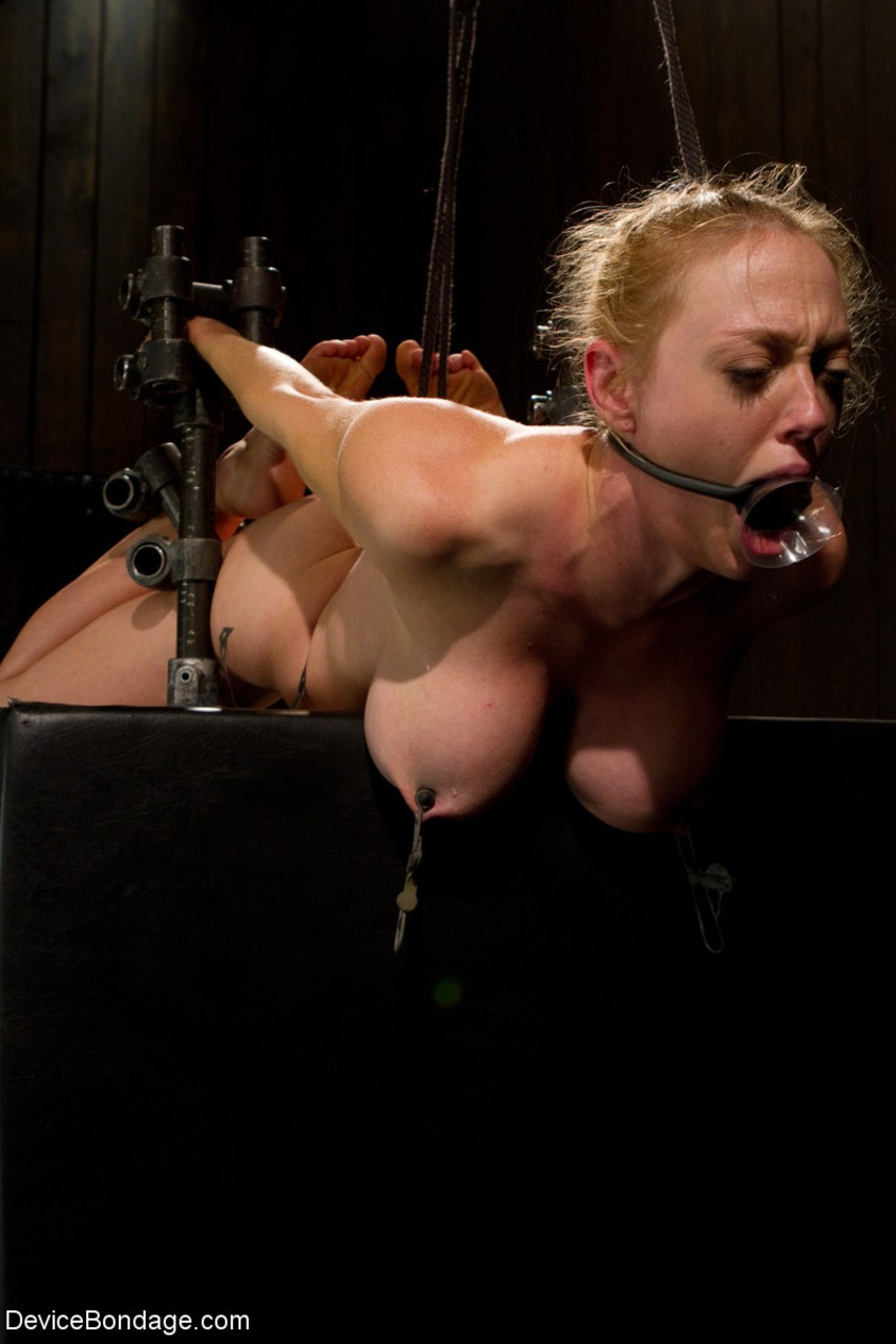 dee williams bdsm