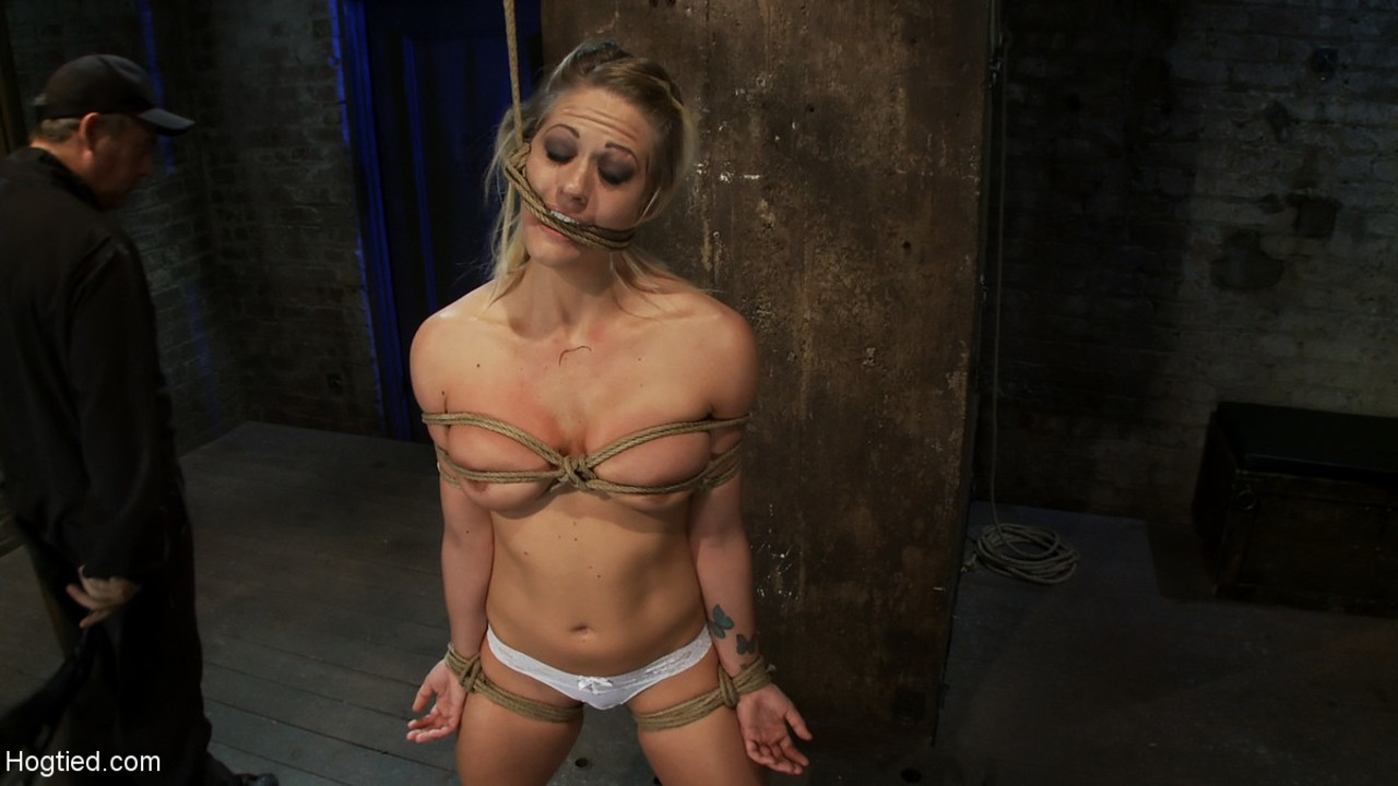 hogtied holly heart