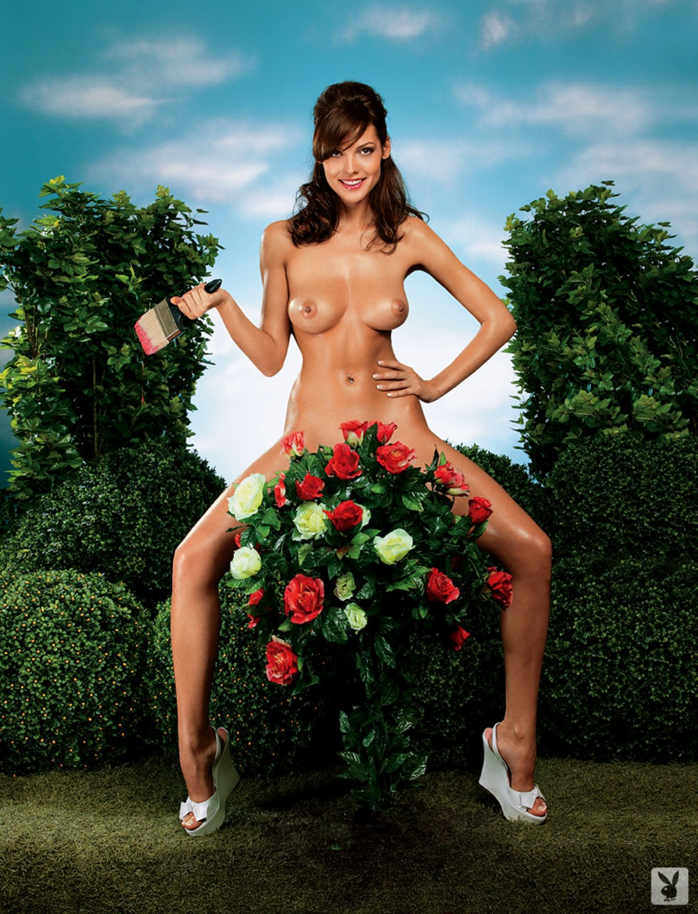 Various females take off their clothes and striking sexy poses for Playboy