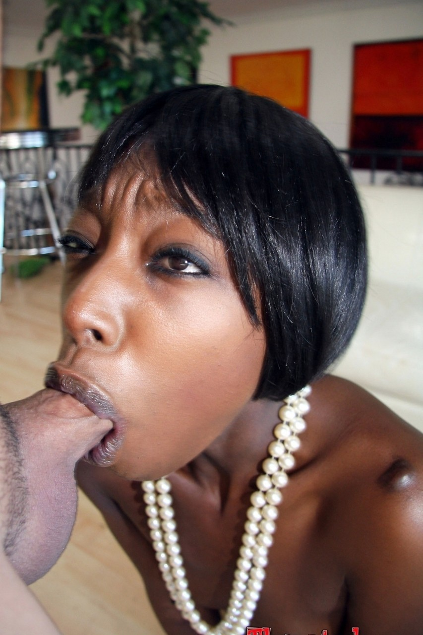 Black Chick Sucking White Dick