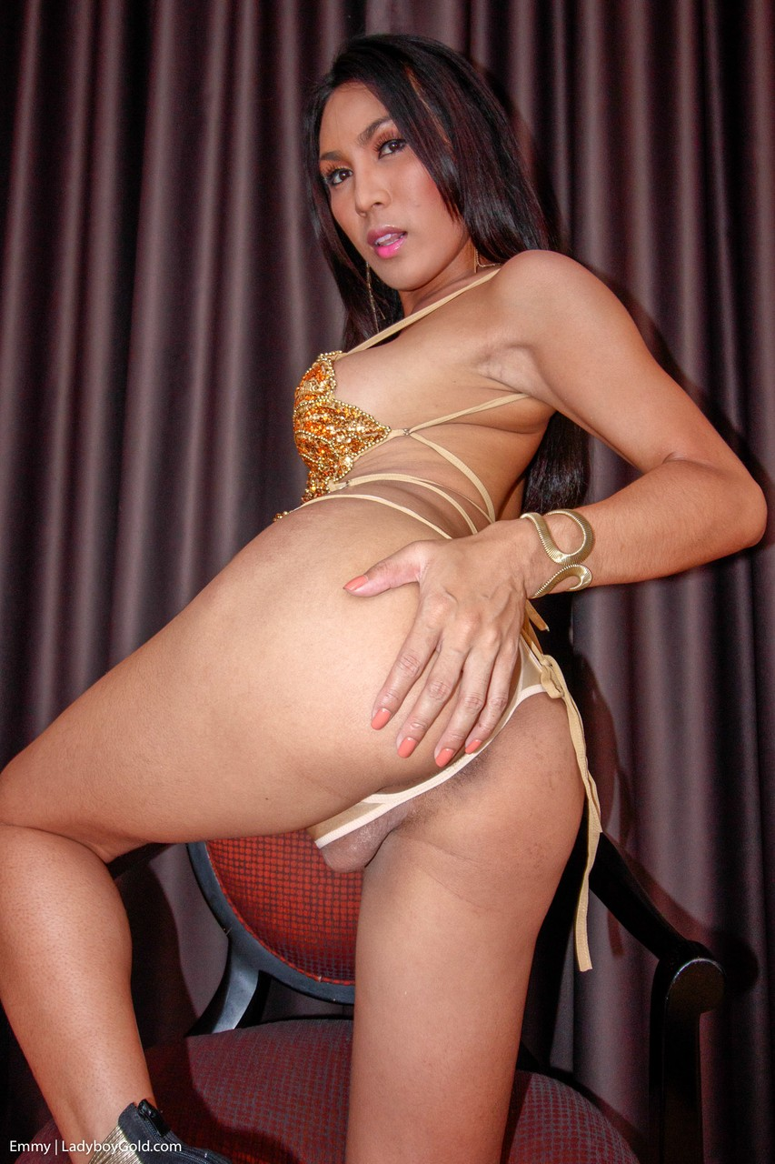 Tempting Ladyboy babe Emmy is posing in hot outfit before getting assfucked