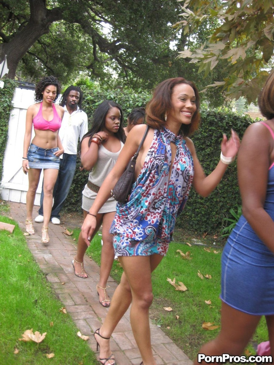 Ebony Amile Waters  her gaggle of girls reveal natural tits  ride a cock
