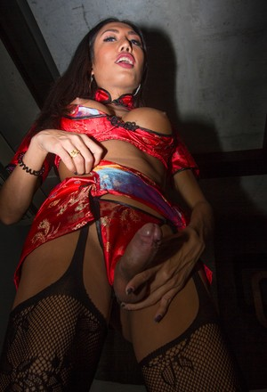 Asian shemale Mos pleasures a man in sexy attire and mesh nylons