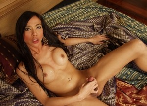Photographer jerks off and cums on gorgeous Asian shemale model's nipples