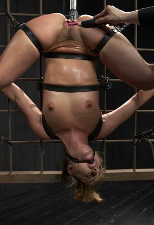 Blonde chick Sheena Shaw is suspended upside down and masturbated