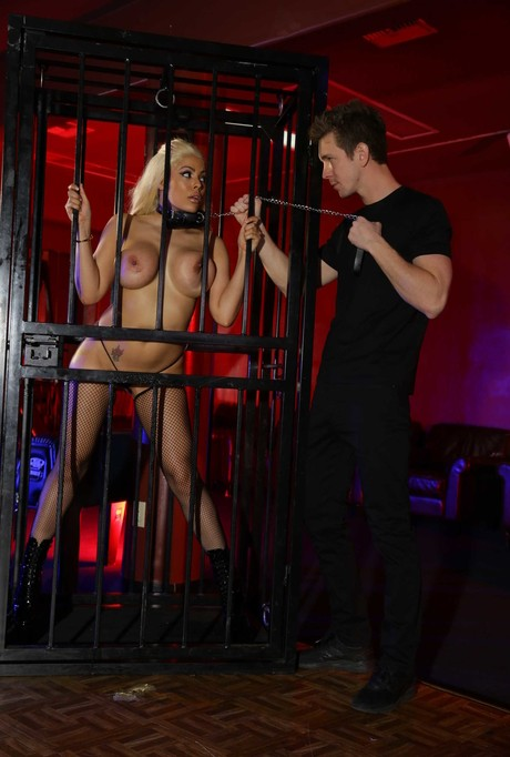 Sexiest Collared Blonde Chick Luna Star Gets Butt Fucked In Fishnets Pictures 1